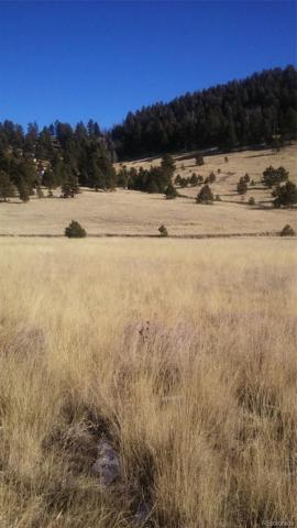 549 Penrose Circle, Cripple Creek, CO 80813 (#6724950) :: Wisdom Real Estate