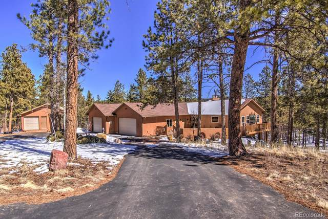 126 Druid Trail, Florissant, CO 80816 (MLS #6725557) :: 8z Real Estate