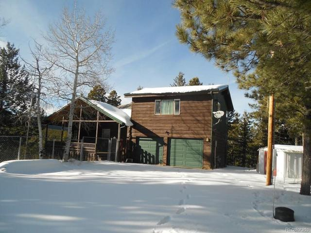 9165 Jill Drive, Conifer, CO 80433 (#6733018) :: The Heyl Group at Keller Williams