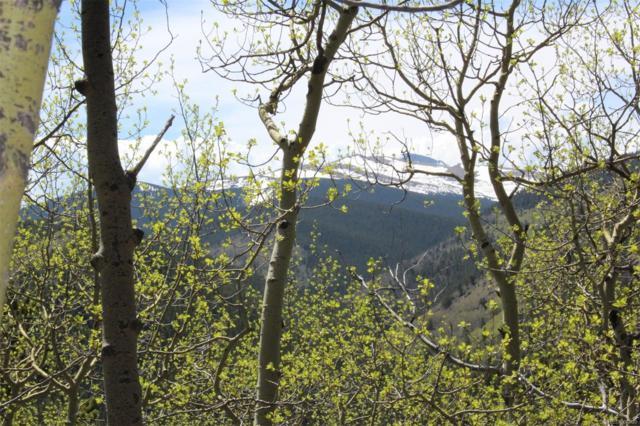4330 Apex Valley Road, Black Hawk, CO 80422 (MLS #6733859) :: 8z Real Estate