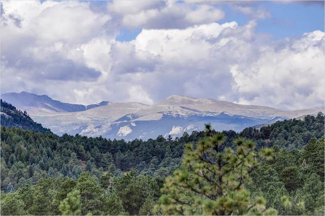 28967 Clover Lane, Evergreen, CO 80439 (#6737186) :: The Peak Properties Group