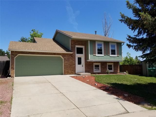9397 W Nichols Place, Littleton, CO 80128 (#6738662) :: The HomeSmiths Team - Keller Williams