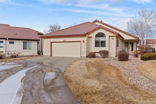 8463 Robb Circle, Arvada, CO 80005 (#6738665) :: Bring Home Denver with Keller Williams Downtown Realty LLC