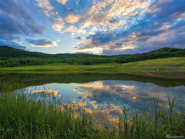 40875 County Road 36, Steamboat Springs, CO 80487 (MLS #6740079) :: 8z Real Estate