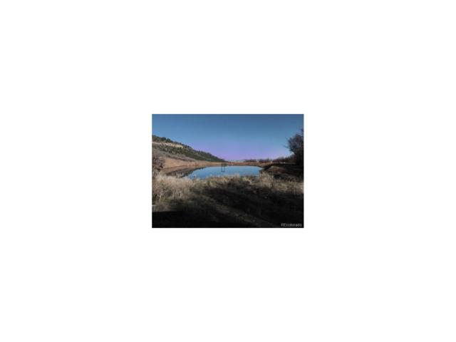 5491 S 7 1/2 Road, Glade Park, CO 81523 (MLS #6741889) :: 8z Real Estate