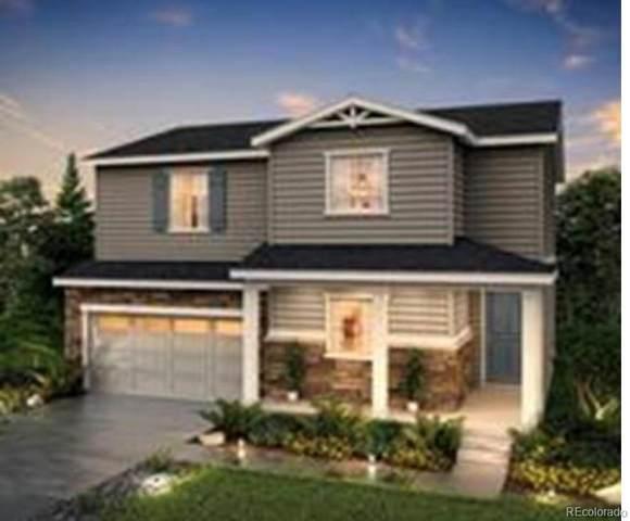 2035 Villageview Lane, Castle Rock, CO 80104 (#6744387) :: The HomeSmiths Team - Keller Williams