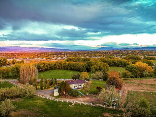 5179 Old Wagon Road, Delta, CO 81416 (#6747329) :: Sellstate Realty Pros
