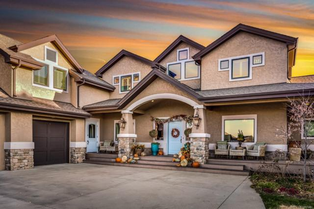 1196 Hickory Way, Erie, CO 80516 (#6747450) :: The City and Mountains Group