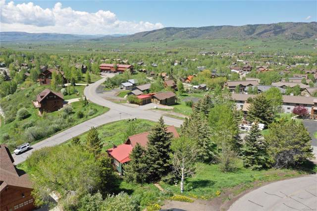 2980 Alpenglow Way, Steamboat Springs, CO 80487 (MLS #6748283) :: The Sam Biller Home Team