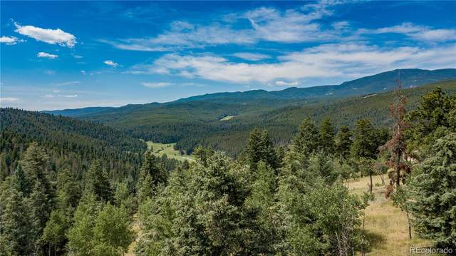 29653 Meadow Spur Lane, Evergreen, CO 80439 (#6749049) :: Bring Home Denver with Keller Williams Downtown Realty LLC
