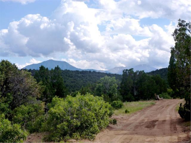 12 La Veta Pines, La Veta, CO 81055 (MLS #6751186) :: 8z Real Estate