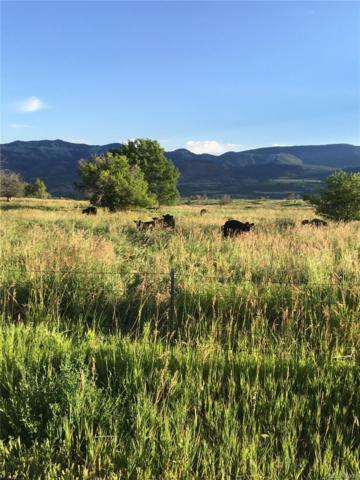 Ne Road, Collbran, CO 81624 (#6753575) :: House Hunters Colorado