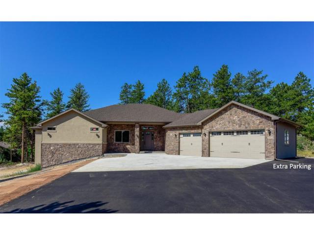 7395 Cameron Circle, Larkspur, CO 80118 (MLS #6753639) :: 8z Real Estate