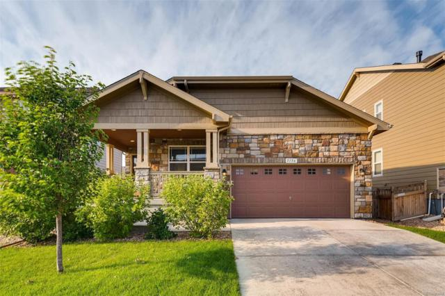 5156 Chicory Circle, Brighton, CO 80601 (#6753802) :: The DeGrood Team