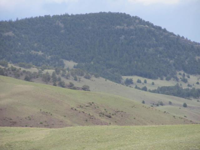 000 Black Beaver Trail, Hartsel, CO 80449 (MLS #6755205) :: 8z Real Estate