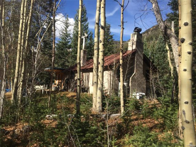1414 Silver Valley Roads, Silver Plume, CO 80476 (#6756197) :: House Hunters Colorado