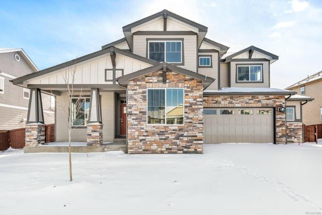 6111 Gannet Drive, Timnath, CO 80547 (MLS #6759158) :: Bliss Realty Group