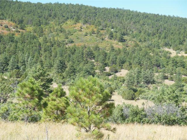 Na, Colorado City, CO 81019 (MLS #6760278) :: 8z Real Estate