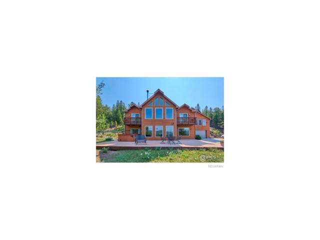 425 Dudes Drive, Rollinsville, CO 80474 (MLS #6763512) :: 8z Real Estate