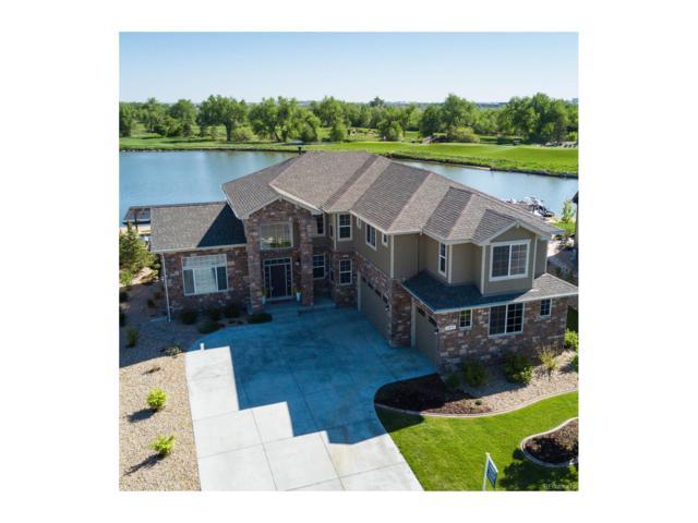 1893 E Seadrift Drive, Windsor, CO 80550 (MLS #6764912) :: 8z Real Estate
