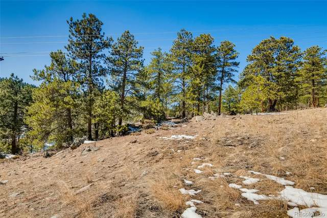 1493 Pinedale Ranch Circle, Evergreen, CO 80439 (MLS #6769624) :: The Sam Biller Home Team