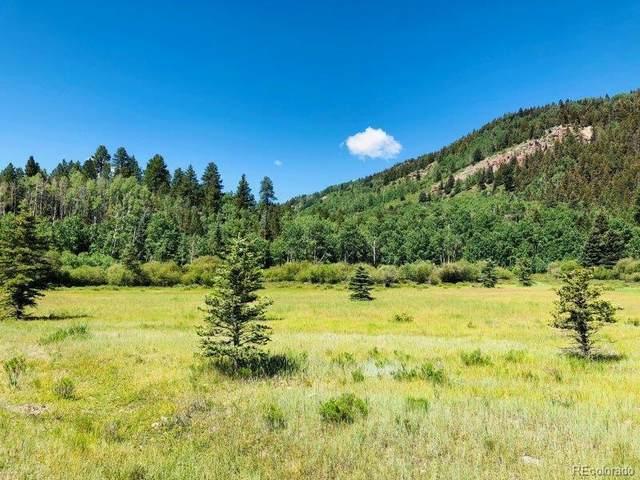 466 River Run Drive, Antonito, CO 81120 (#6769789) :: The DeGrood Team