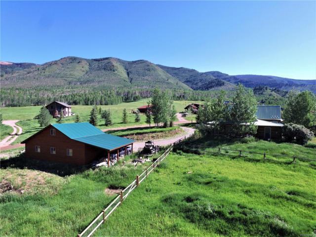 10 Hawk Lane, Basalt, CO 81621 (MLS #6771723) :: 8z Real Estate