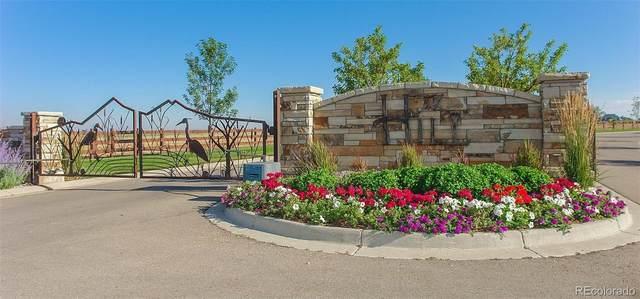 3650 Blossom House Lane, Fort Collins, CO 80526 (MLS #6772032) :: Stephanie Kolesar