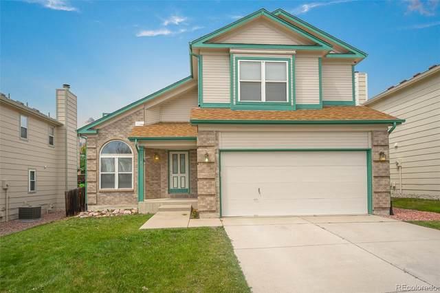 7828 Swiftrun Road, Colorado Springs, CO 80920 (MLS #6772836) :: 8z Real Estate