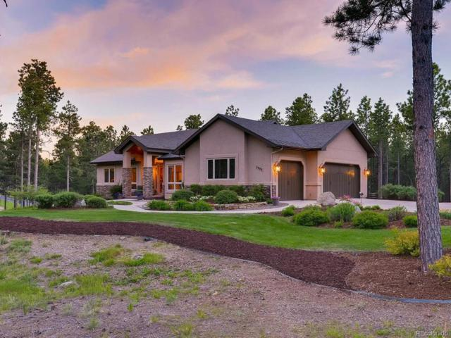 3985 Canopy Court, Colorado Springs, CO 80908 (#6774559) :: The Peak Properties Group