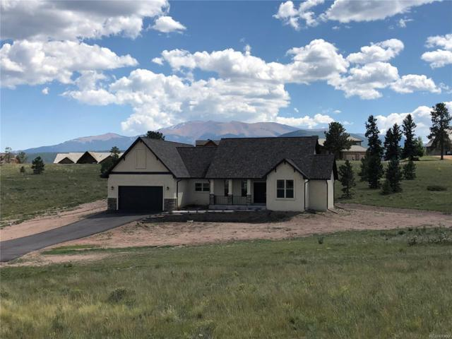 107 Samantha Way, Divide, CO 80814 (#6775045) :: The Peak Properties Group