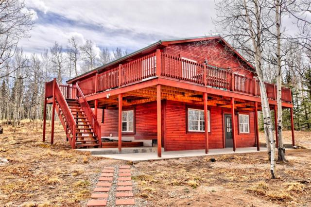 306 Vulture Lane, Como, CO 80432 (#6775535) :: Bring Home Denver