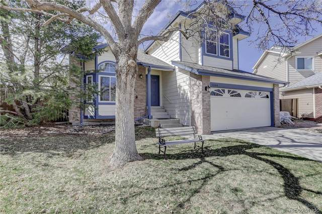 1306 Knollwood Way, Highlands Ranch, CO 80126 (#6777600) :: The Gilbert Group