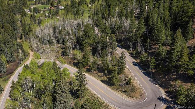 2941 Witter Gulch, Evergreen, CO 80439 (#6778207) :: You 1st Realty