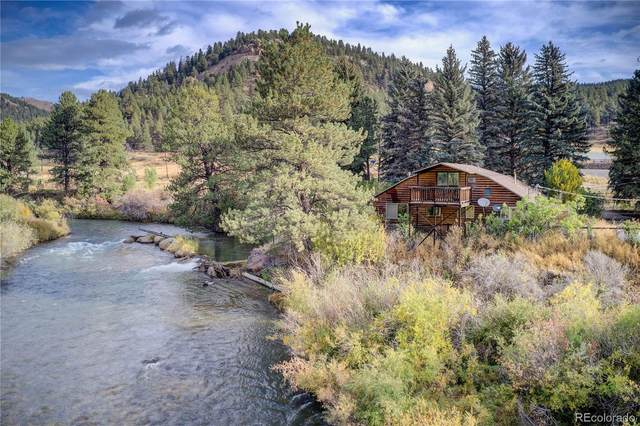 16935 County Road 126, Pine, CO 80470 (#6779490) :: The Colorado Foothills Team | Berkshire Hathaway Elevated Living Real Estate