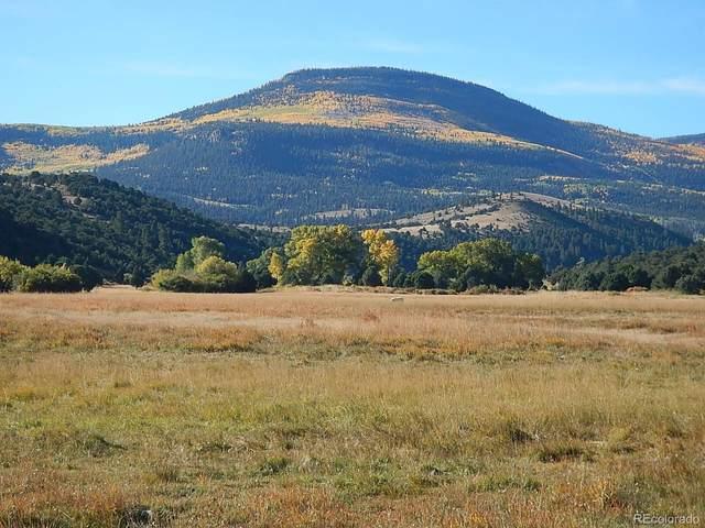 00 Highway 160, South Fork, CO 81154 (MLS #6779738) :: 8z Real Estate