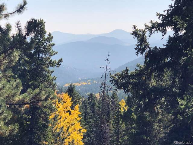 103 Pinewood Drive, Evergreen, CO 80439 (#6780074) :: Real Estate Professionals