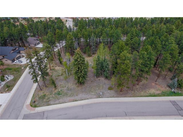 600 Meadowlark Lane, Woodland Park, CO 80863 (MLS #6780192) :: Bliss Realty Group