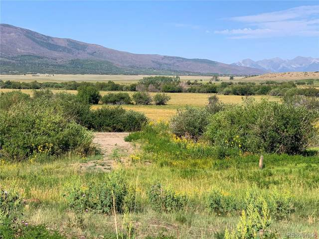 191 Two Creeks, Cotopaxi, CO 81223 (#6780572) :: Portenga Properties - LIV Sotheby's International Realty