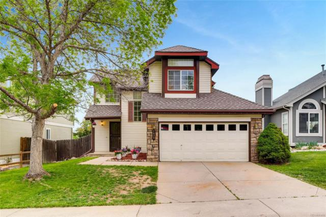 7626 Dusk Street, Littleton, CO 80215 (#6781467) :: The Pete Cook Home Group
