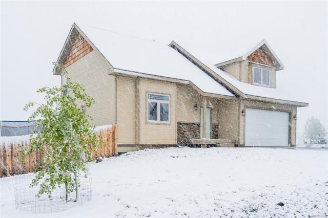 336 Starlite Lane, Hayden, CO 81639 (MLS #6782015) :: 8z Real Estate