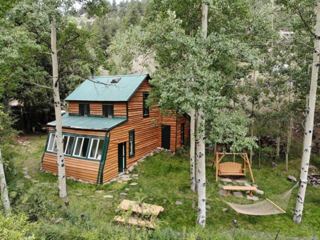 2645 Trail Creek Road, Idaho Springs, CO 80452 (#6789368) :: Structure CO Group