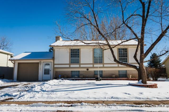 4566 S Yank Street, Morrison, CO 80465 (#6789951) :: Wisdom Real Estate
