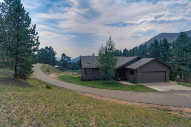 15737 Pine Valley Road, Pine, CO 80470 (#6792435) :: The Griffith Home Team