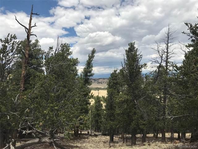 1353 Summit Road, Hartsel, CO 80449 (#6792524) :: Wisdom Real Estate