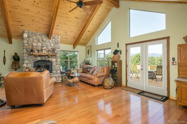 289 Double Tree Road, Bailey, CO 80421 (#6793321) :: The DeGrood Team