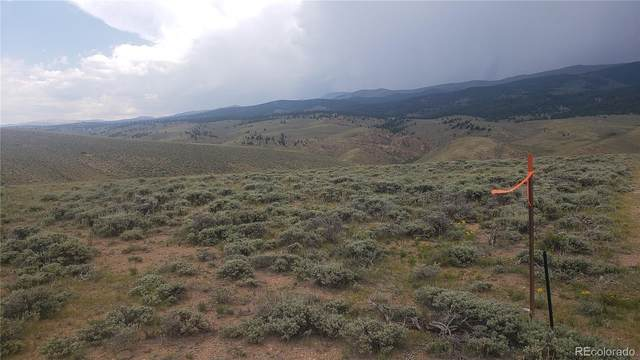 Parcel 1-A, Tract 81, Twin Lakes, CO 81251 (#6795391) :: The DeGrood Team