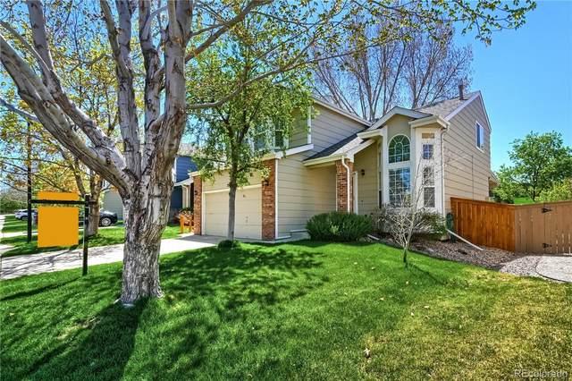 2156 Fendlebrush Street, Highlands Ranch, CO 80129 (#6796165) :: HomeSmart