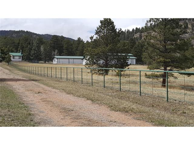 8463 County 92 Road, Lake George, CO 80827 (MLS #6798554) :: 8z Real Estate