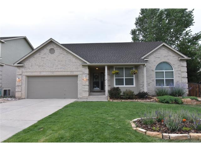 1320 Carlson Drive, Colorado Springs, CO 80919 (MLS #6800673) :: 8z Real Estate